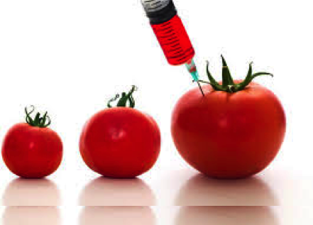 Genetically Modified Foods – Beware