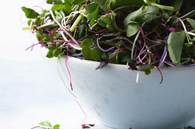 Magical Microgreen Salad